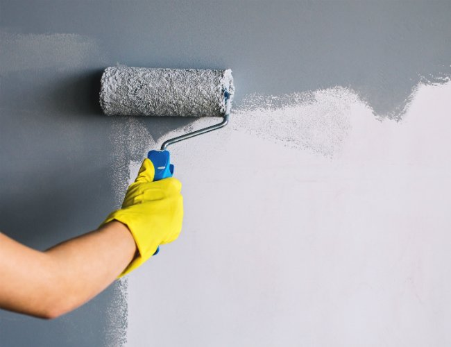 What is the Difference Between Satin Paint and Eggshell Paint?